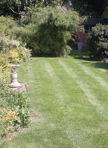 A cared-for lawn!